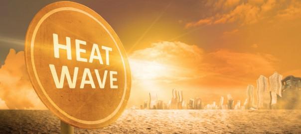 Heat Wave_1064320700-1