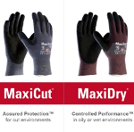ATG gloves: MaxiFlex, MaxiCut, MaxiDry, MaxiChem
